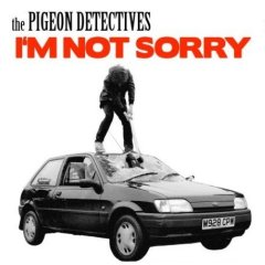 Pigeon Detectives - Im Not Sorry