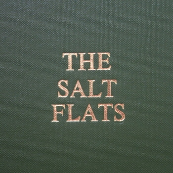 The Salt Flats - Interview