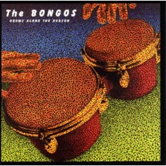 The Bongos - Drums Across the Hudson